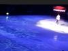 Звезды на льду 10
