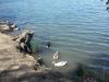 Васона парк Озеро 1