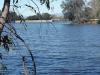 Васона парк Озеро 2